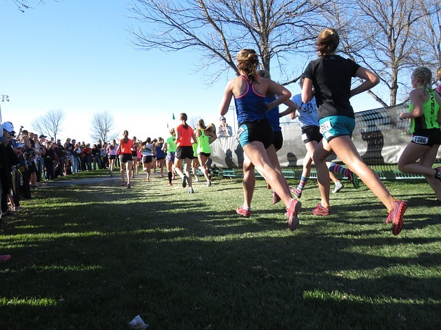 Cross country runners on grass