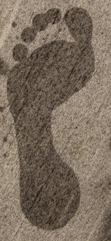 Foot type shown by wet footprint